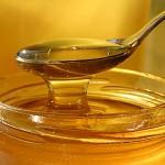 Il miele di Tornareccio è campione del mondo
